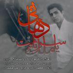 کاور آهنگ Yaser Malek Sabet - Dehati
