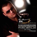 کاور آهنگ Pouria Abdollahi - Khob Midooni