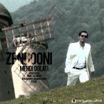 کاور آهنگ Mehdi Dolati - Zendooni