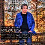 کاور آهنگ Farshad Hesami - Payiz Bedoone To
