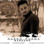 Saeed Pasha - Bargard