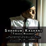 کاور آهنگ Shahram Kashani - Tarze Negahet