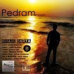 کاور آهنگ Pedram Akhlaghi - Shabe Darya
