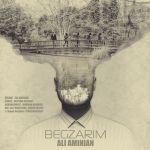 کاور آهنگ Ali Aminian - Begzarim