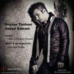 کاور آهنگ Saeed Samani - Royaye Tanhaei