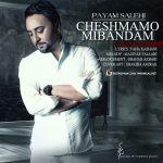 کاور آهنگ Payam Salehi - Cheshmamo Mibandam