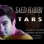 کاور آهنگ Saed habibi - Tars