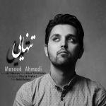 کاور آهنگ Masoud Ahmadi - Tanhaei