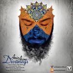 کاور آهنگ Amir Azimi - Divanegi