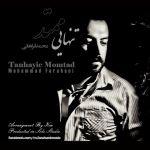 کاور آهنگ Mohammad Farahani - Tanhaie Momtad