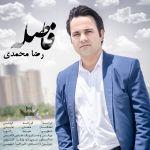 کاور آهنگ Reza Mohammadi - Fasele