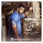 کاور آهنگ Amir Hosein - To Nisti