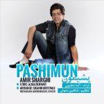 کاور آهنگ Amir Sharghi - Pashimoon