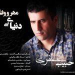 کاور آهنگ Habib Jafari - Donyaye Bi Mehro Vafa