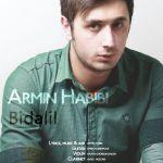 کاور آهنگ Amin Habibi - Bidalil