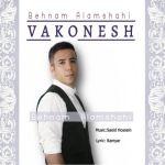 کاور آهنگ Behnam Alamshahi - Vakonesh