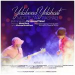 کاور آهنگ Morteza Pashaei - Yeki Bood Yeki Hast