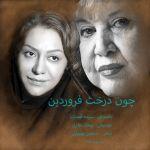 کاور آهنگ Sepideh Ghozat - Chon Derakht Farvardin