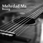 کاور آهنگ Mehrdad Ms - Bozorg