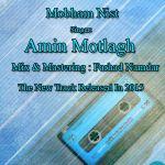 کاور آهنگ Amin Motlagh - Mobham Nist