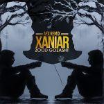 کاور آهنگ Xaniar - Zood Gozasht (Remix)