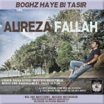 کاور آهنگ Alireza Fallah - Boghz Haye Bi Tasir