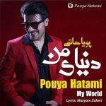 کاور آهنگ Pouya Hatami - Donyaye Man