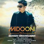 کاور آهنگ Mohsen EbrahimZadeh - Midoni