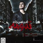 کاور آهنگ Amir Hasanzadeh - Tamoome