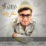 Vahid Aria - Aghrabeha