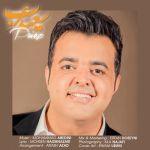 کاور آهنگ Saeed Arab - Paeiz