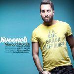 کاور آهنگ Masoud Moradi - Divooneh