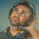کاور آهنگ Saeed Hashemi - Zoje Khass (FT Roxana & Benow)