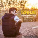 کاور آهنگ Soheil Mehrzadegan - Tanhaei