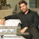 کاور آهنگ Reza Malekzadeh - Deltangi Haye Man