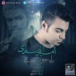 کاور آهنگ Amir Ansari - Delam Khosh Nist