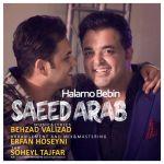 کاور آهنگ Saeed Arab - Halamo Bebin