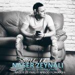 کاور آهنگ Naser Zeynali - Pat Vay Misam