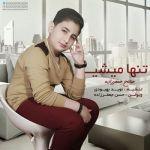 کاور آهنگ Saleh Jafarzadeh - Tanha Mishi