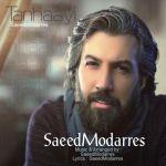 کاور آهنگ Saeed Modarres - Tanhayi
