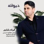 Farzad Babaei - Divaneh