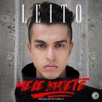 کاور آهنگ Behzad Leito - Mese Khoete