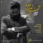 کاور آهنگ Ali Zand Vakili - Akharin Royai