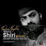 کاور آهنگ Reza Shiri - Tanhayi Nazdike
