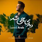 کاور آهنگ Saeed Arab - Didi Chi Shod