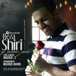 کاور آهنگ Reza Shiri - Ye Adame Jadid