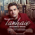Mohammad Minaie - Tanhaei