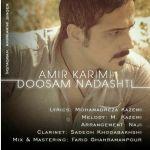 کاور آهنگ Amir Karimi - Doosam Nadashti
