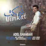 کاور آهنگ Adel Ghanbari - Nimkat