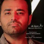کاور آهنگ Meysam Ebrahimi - Bi Dalil